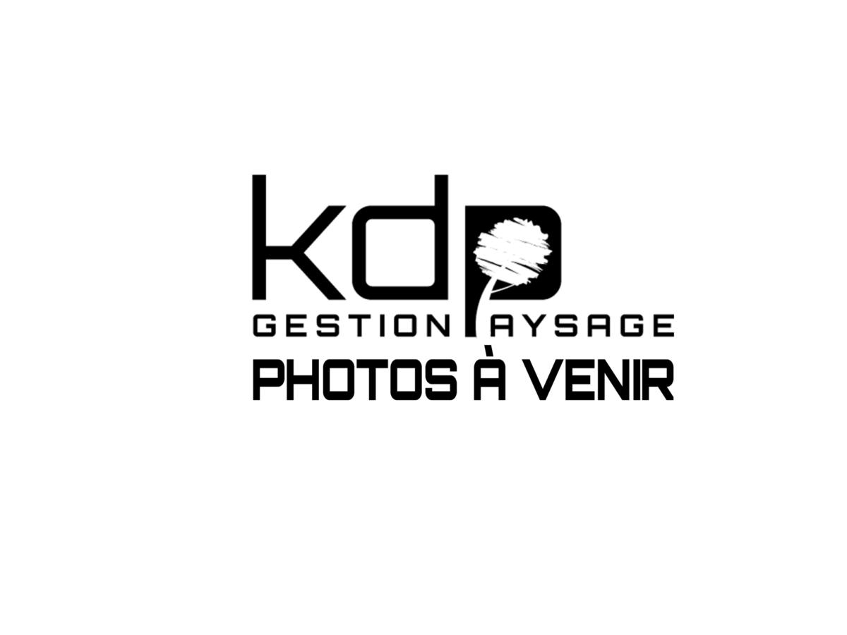 KDP Image a venir